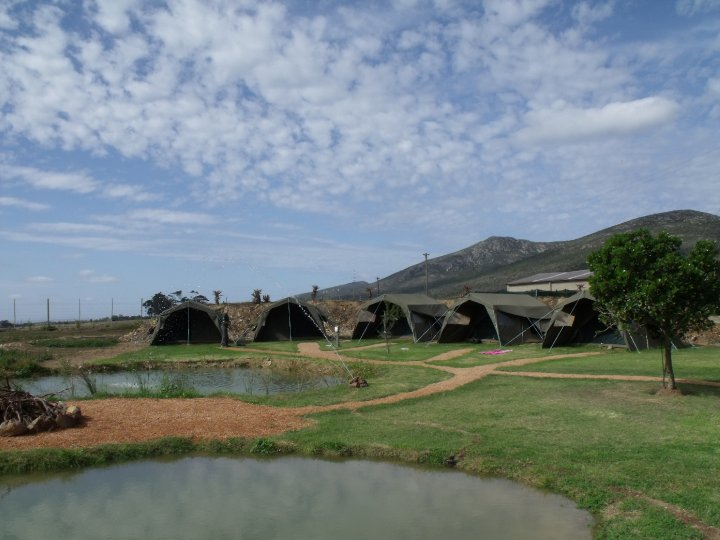 Big 5 Tented Camp South Africa