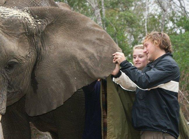 Elephant Sanctuary Volunteers